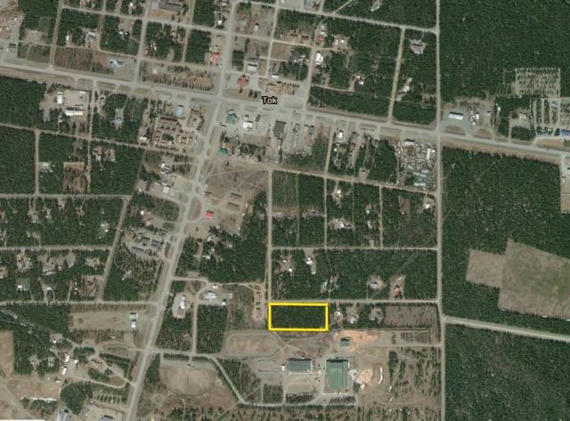 NHN Willow, Tok, AK 99780 (MLS #139234) :: Madden Real Estate