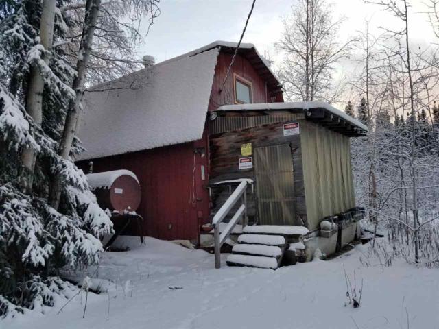 370 Lake Trout Lane, Fairbanks, AK 99712 (MLS #139324) :: Powered By Lymburner Realty