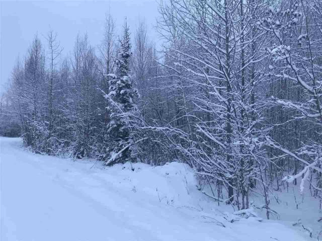 15420 W Mizzen Drive, Big Lake, AK 99652 (MLS #139348) :: Madden Real Estate