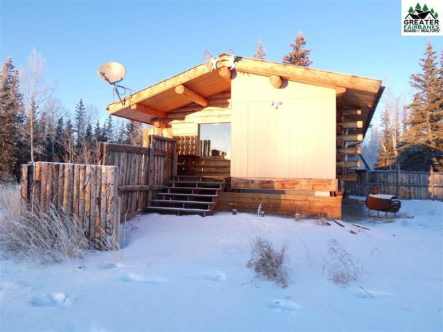 6995 Lester Road, Delta Junction, AK 99737 (MLS #139415) :: Madden Real Estate