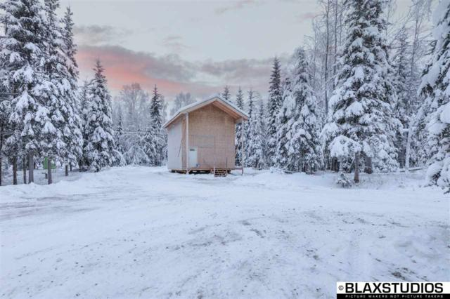 1610 Persinger Drive, North Pole, AK 99705 (MLS #139508) :: Powered By Lymburner Realty