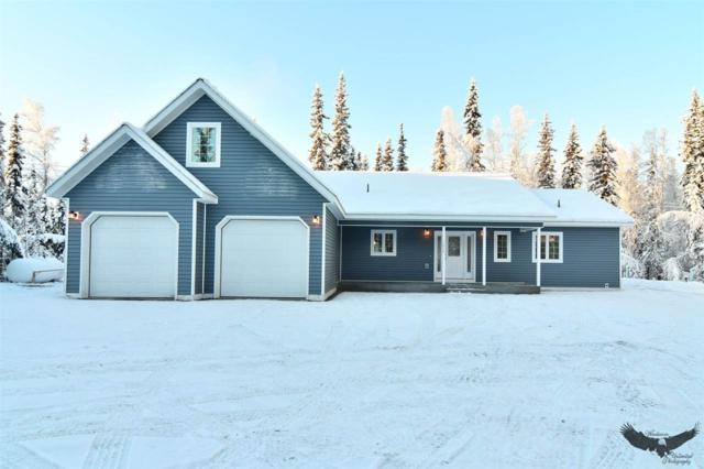 L17 Dallas Drive, North Pole, AK 99705 (MLS #139510) :: Madden Real Estate