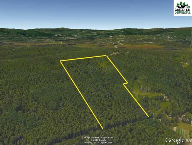NHN Grenac Road, Fairbanks, AK 99712 (MLS #139553) :: Madden Real Estate
