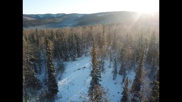 NHN Friendly Dr Harding Lake, Salcha, AK 99714 (MLS #139583) :: Madden Real Estate