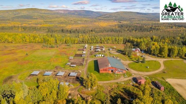 2441 Lawlor Road, Fairbanks, AK 99709 (MLS #139585) :: Powered By Lymburner Realty