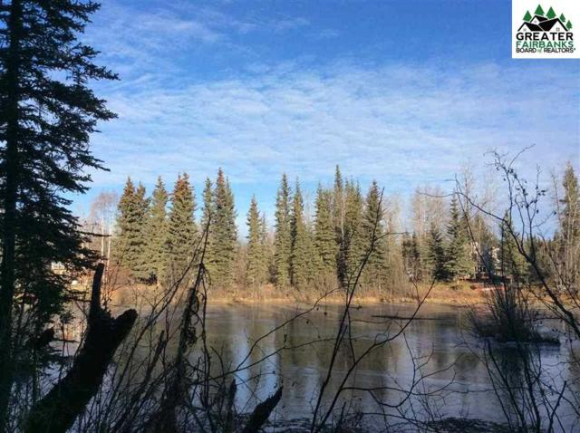 NHN Lucinda Court, North Pole, AK 99705 (MLS #139602) :: Madden Real Estate