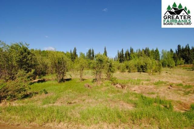 Lot 3 Foxtail Drive, Fairbanks, AK 99712 (MLS #139633) :: Powered By Lymburner Realty