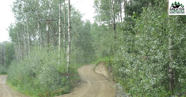 NHN Flux Court, Fairbanks, AK 99709 (MLS #139645) :: Madden Real Estate