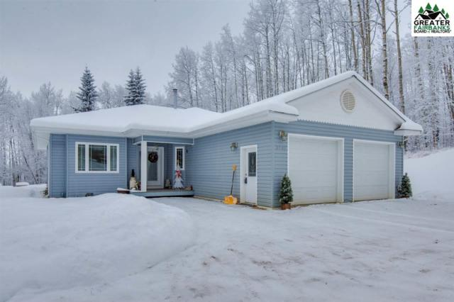 3941 Parks Ridge Road, Fairbanks, AK 99709 (MLS #139686) :: Powered By Lymburner Realty