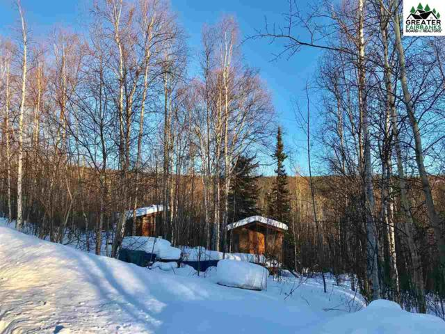 5934 Haystack Drive, Fairbanks, AK 99712 (MLS #139769) :: Powered By Lymburner Realty