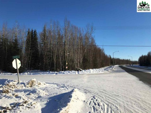 nhn Peridot Street, North Pole, AK 99705 (MLS #139785) :: Madden Real Estate