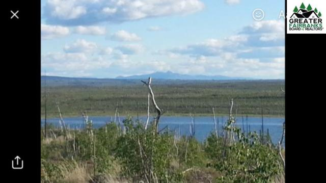 NHN Dune Lake, Nenana, AK 99754 (MLS #139818) :: Powered By Lymburner Realty