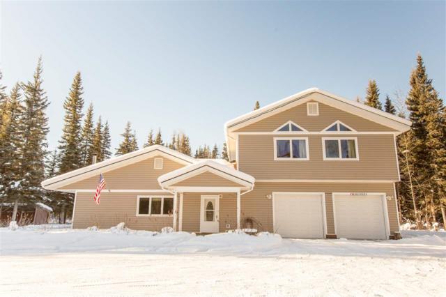 1750 Blackburn Way, North Pole, AK 99705 (MLS #139844) :: Madden Real Estate