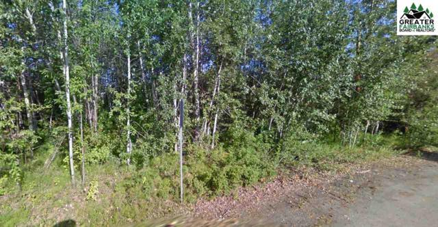 NHN Hamilton Avenue, Fairbanks, AK 99701 (MLS #139853) :: Madden Real Estate
