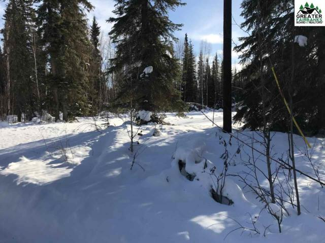 2563 Counsell Lane, North Pole, AK 99705 (MLS #139859) :: Madden Real Estate
