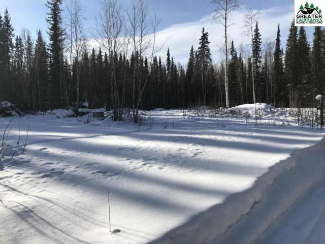 2603 Counsell Lane, North Pole, AK 99705 (MLS #139860) :: Madden Real Estate