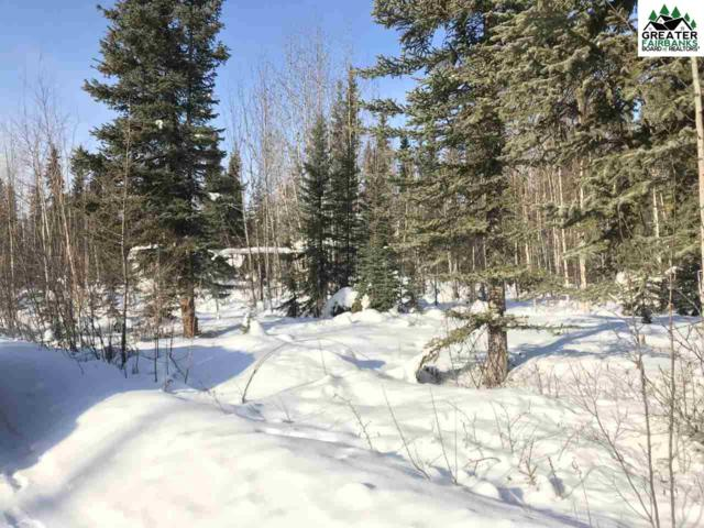 2600 Counsell Lane, North Pole, AK 99705 (MLS #139861) :: Madden Real Estate