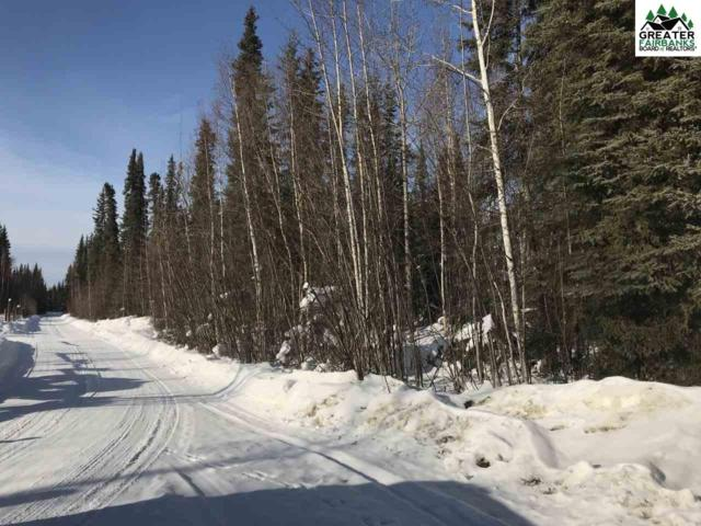 NHA Counsell Lane, North Pole, AK 99705 (MLS #139862) :: Madden Real Estate