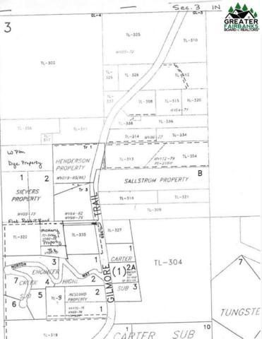 N/A Gilmore Trail, Fairbanks, AK 99712 (MLS #139871) :: Madden Real Estate