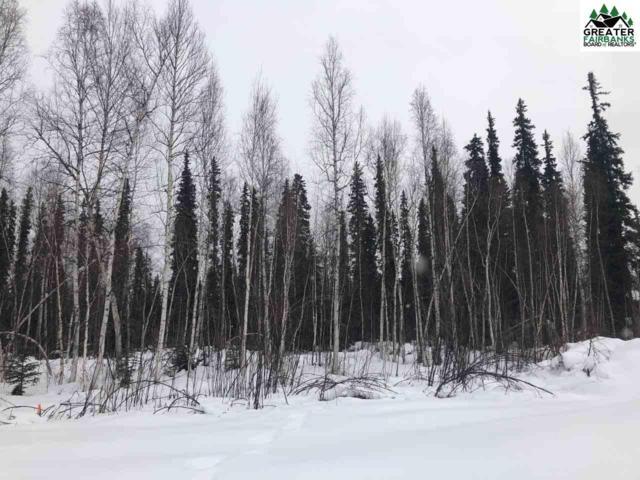 LOT 26 Christine Drive, North Pole, AK 99705 (MLS #139895) :: Madden Real Estate