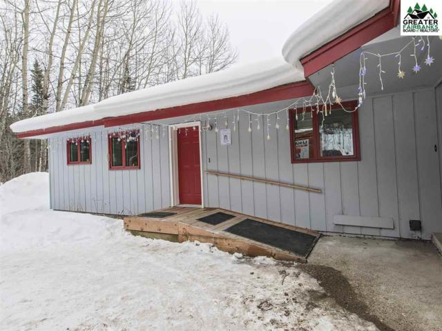 1434 Hans Way, Fairbanks, AK 99709 (MLS #139910) :: Madden Real Estate