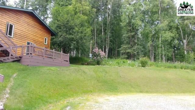 798 Gold Mine Trail, Fairbanks, AK 99712 (MLS #139913) :: Madden Real Estate