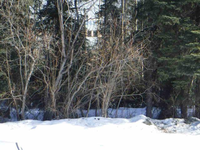 nhn Mad Russian Street, Fairbanks, AK 99712 (MLS #139937) :: Madden Real Estate