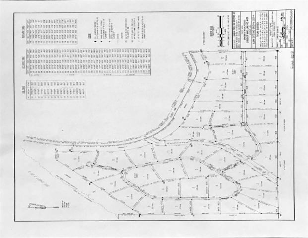nhn Charles Lyell Loop, Fairbanks, AK 99712 (MLS #139939) :: Madden Real Estate