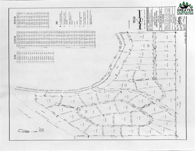 NHN Charles Lyell Loop, Fairbanks, AK 99712 (MLS #139941) :: Madden Real Estate