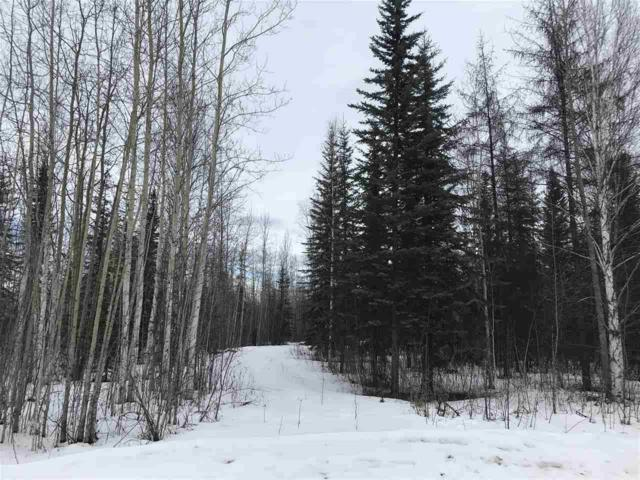 NHN Moosewalk Road, North Pole, AK 99705 (MLS #139986) :: Madden Real Estate