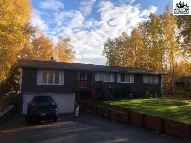 741 Ridge Loop Road, North Pole, AK 99705 (MLS #139998) :: Madden Real Estate