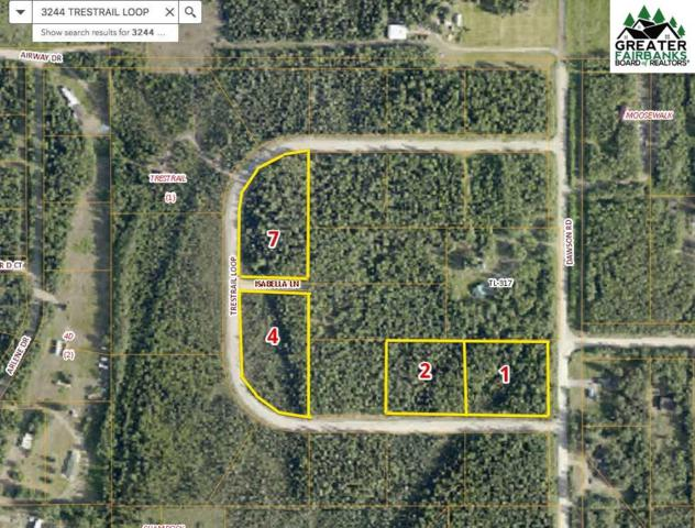 NHN Trestrail Loop, North Pole, AK 99705 (MLS #140040) :: RE/MAX Associates of Fairbanks