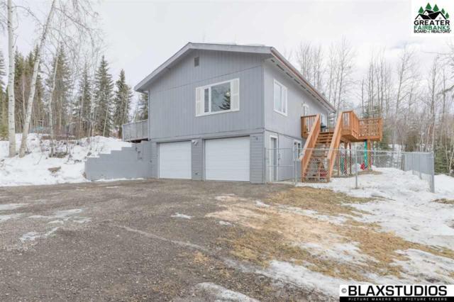 895 Lakloey Drive, North Pole, AK 99705 (MLS #140059) :: Madden Real Estate