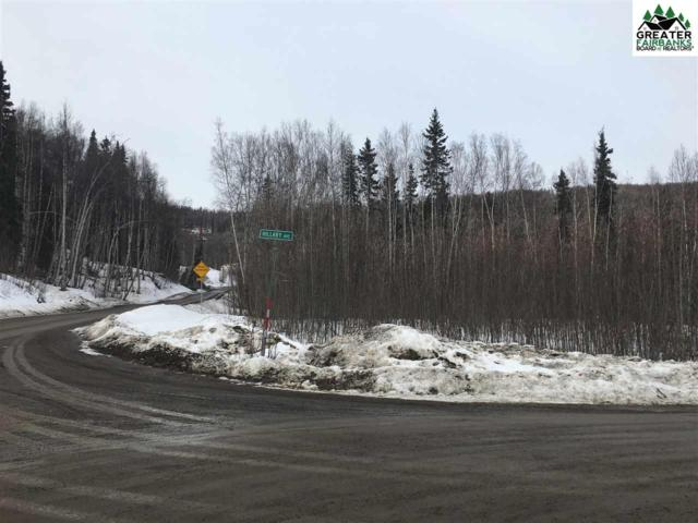 nhn Hillary Avenue, FAIRABNKS, AK 99709 (MLS #140093) :: Powered By Lymburner Realty