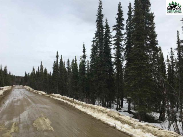 NHN Ballina Road, Fairbanks, AK 99709 (MLS #140126) :: Madden Real Estate