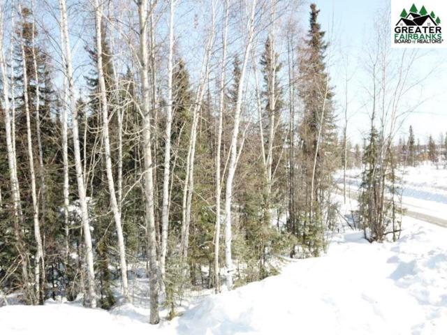 NHN Copper Street, North Pole, AK 99705 (MLS #140219) :: Madden Real Estate