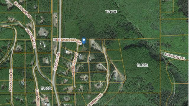 1614 Alpine Vista Court, Fairbanks, AK 99712 (MLS #140280) :: Madden Real Estate