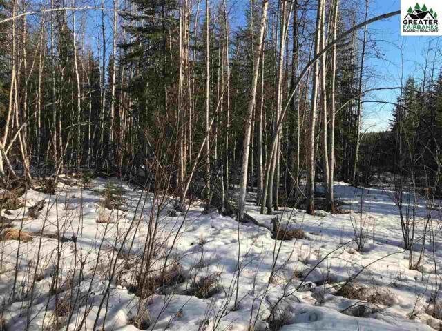 NHN Phelps Road, Fairbanks, AK 99707 (MLS #140306) :: Madden Real Estate