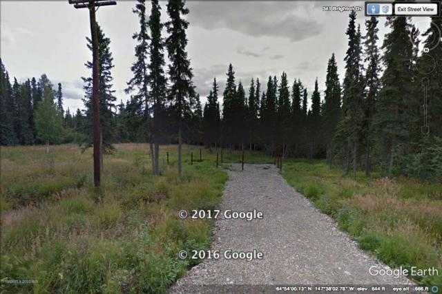 L20B3 NHN Brighton Drive, Fairbanks, AK 99712 (MLS #140334) :: Madden Real Estate