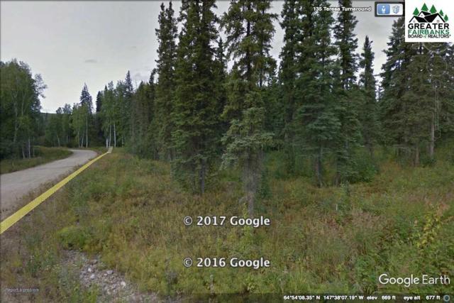 L9B1 NHN Teresa Turnaround/Mcgrath, Fairbanks, AK 99712 (MLS #140371) :: Madden Real Estate