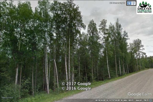 L8B5 NHN Canterbury Drive, Fairbanks, AK 99709 (MLS #140372) :: Madden Real Estate