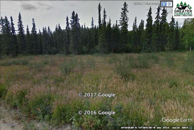 L8B1 NHN Teresa Turnaround/Mcgrath, Fairbanks, AK 99701 (MLS #140394) :: Madden Real Estate