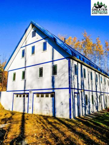 3245 Craft Avenue, Fairbanks, AK 99709 (MLS #140415) :: Madden Real Estate