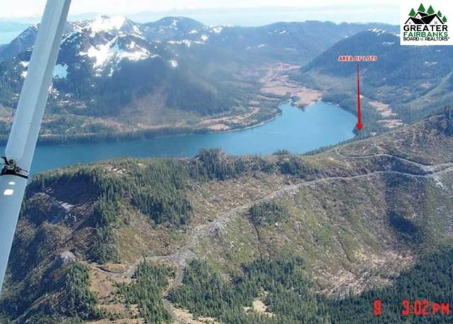 #104 Two Moon Bay, Valdez, AK 99686 (MLS #140446) :: Madden Real Estate