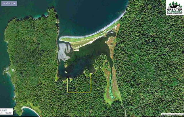 NHN Amook Island, KODIAK, AK 99624 (MLS #140448) :: Madden Real Estate