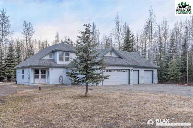 3569 Mandeville Loop, North Pole, AK 99705 (MLS #140451) :: Madden Real Estate