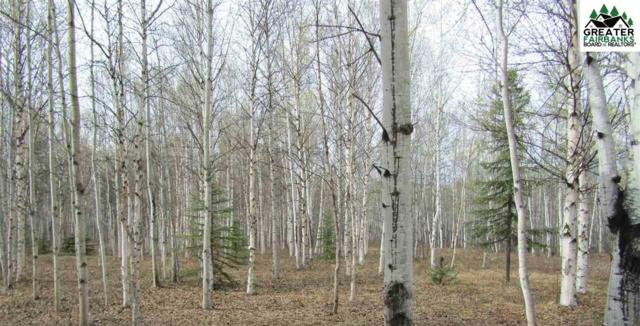 L25-26 Canvas Back Drive, Delta Junction, AK 99737 (MLS #140504) :: Madden Real Estate