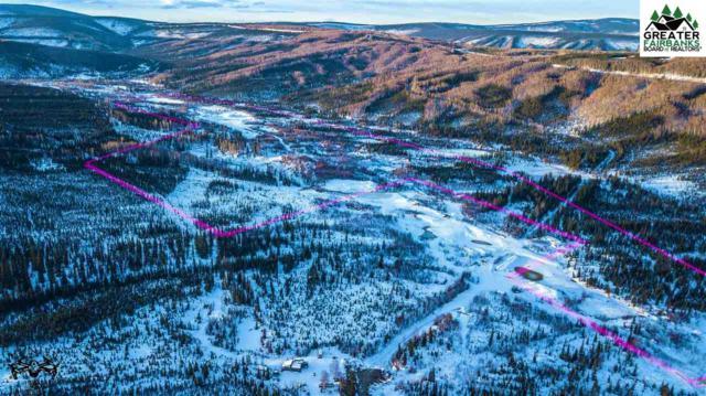 NHN Elliott Highway, Fairbanks, AK 99712 (MLS #140518) :: Madden Real Estate