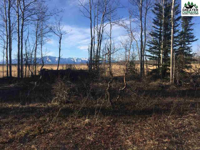 Tract Q and R Ptarmigan Drive, Delta Junction, AK 99737 (MLS #140519) :: Madden Real Estate