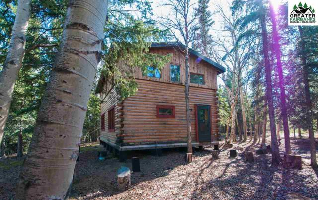 NHN Lignite Road, Healy, AK 99743 (MLS #140587) :: Madden Real Estate